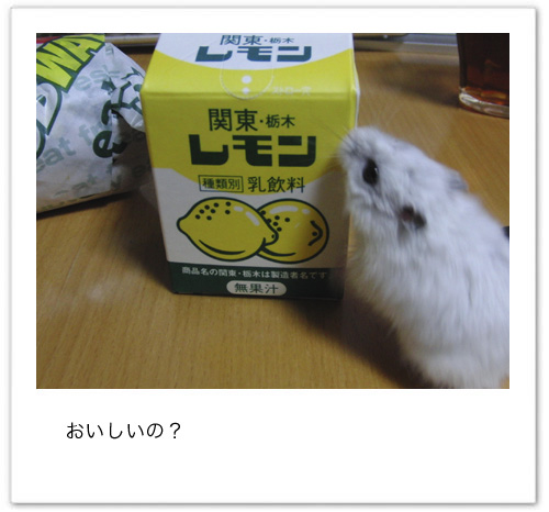 100327_01.jpg